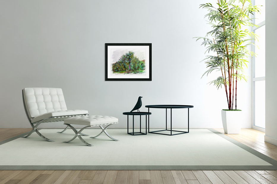 Cascading Olive Tree in Custom Picture Frame