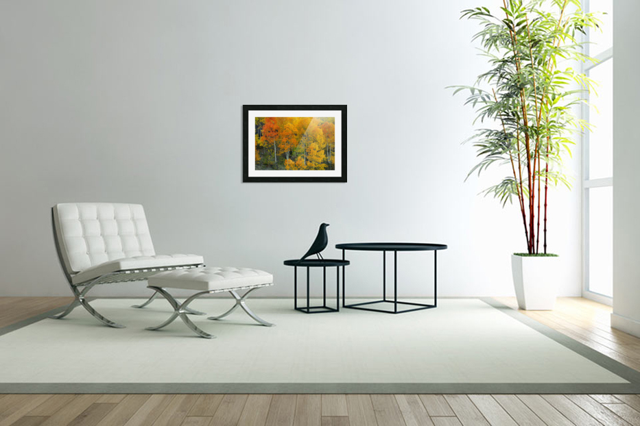AUTUMN SERENITY  in Custom Picture Frame