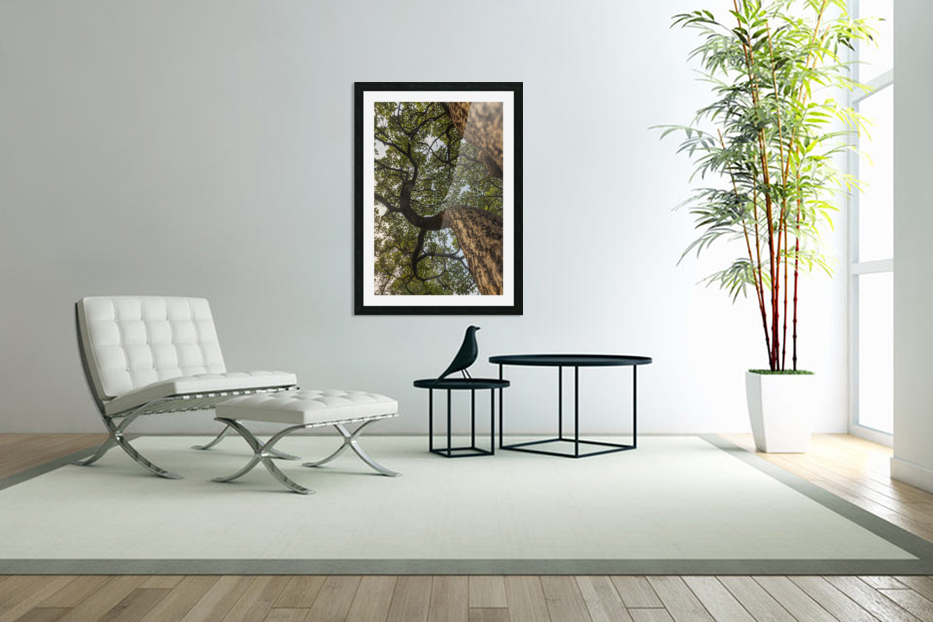 Resilience - Spiral Vertical in Custom Picture Frame