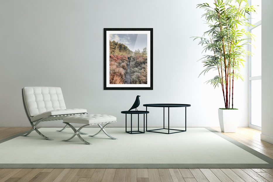 Autumn forest in Custom Picture Frame
