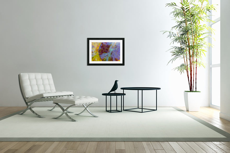 Colors Of Nature ap 2038 in Custom Picture Frame
