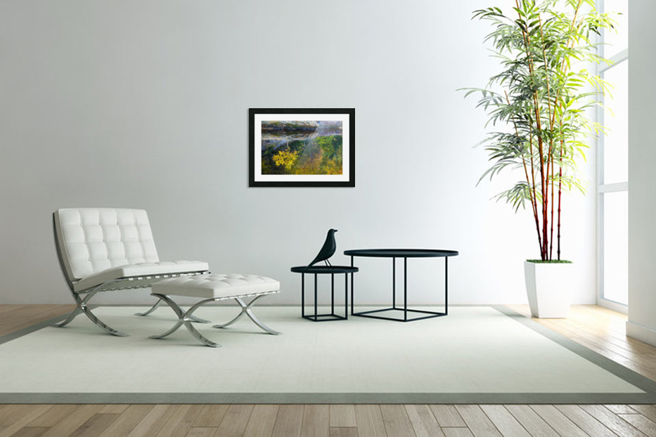 Reflection ap 2529 in Custom Picture Frame