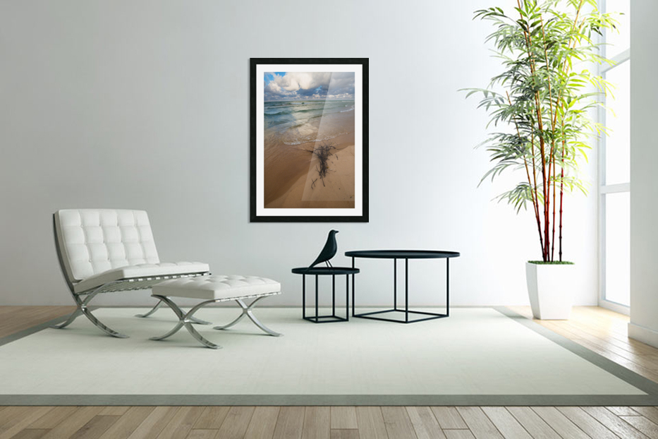 Reflections ap 2416 in Custom Picture Frame