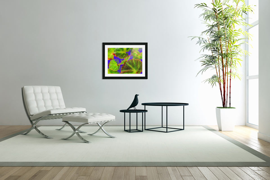 Tropical Colours in Custom Picture Frame