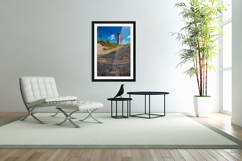 Little Sable ap 2442 in Custom Picture Frame