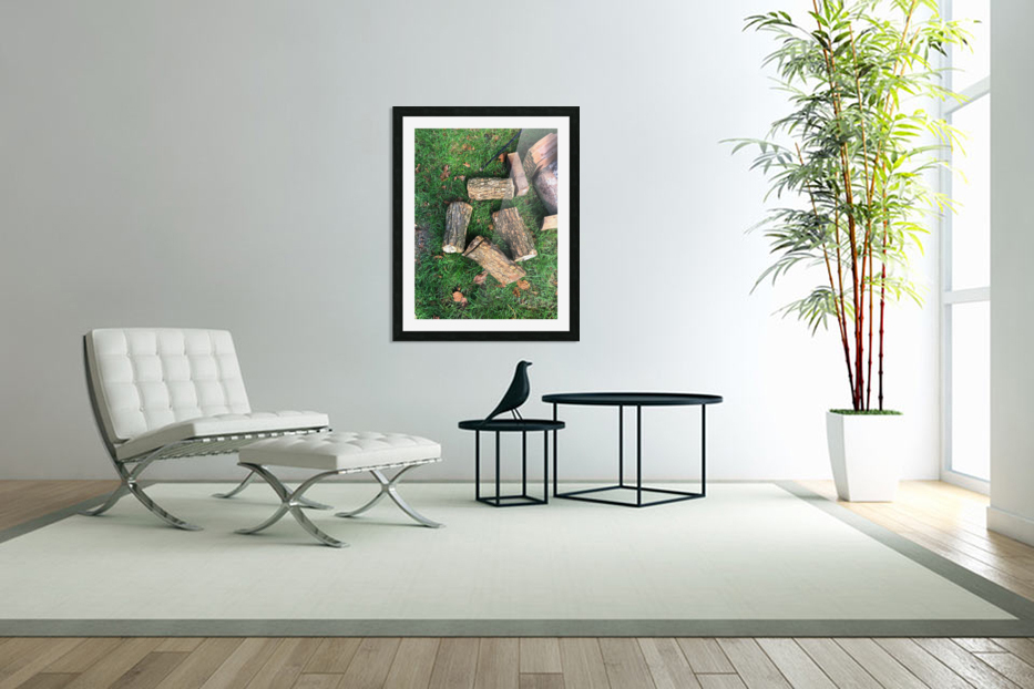 wood for fire in Custom Picture Frame