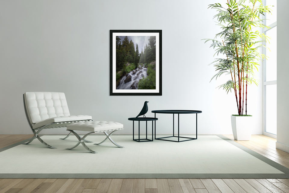 Rocky Mountain National Park in Custom Picture Frame