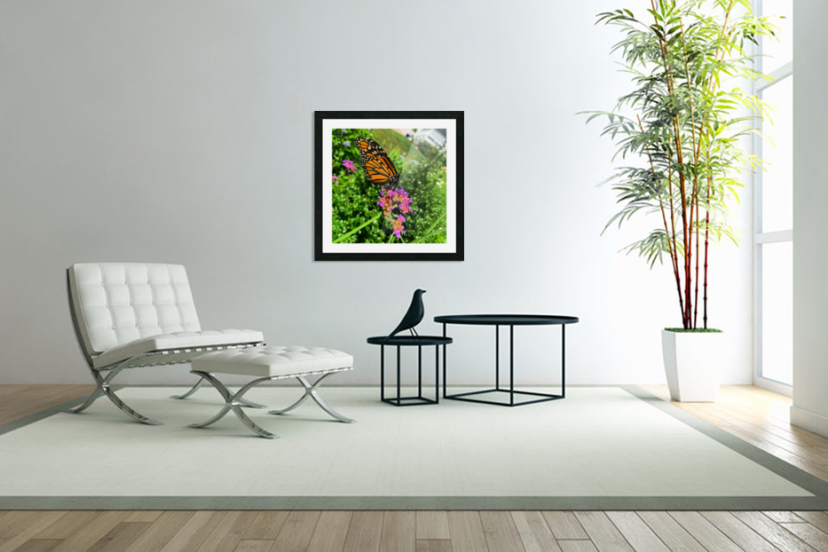Butterfly Bliss  in Custom Picture Frame