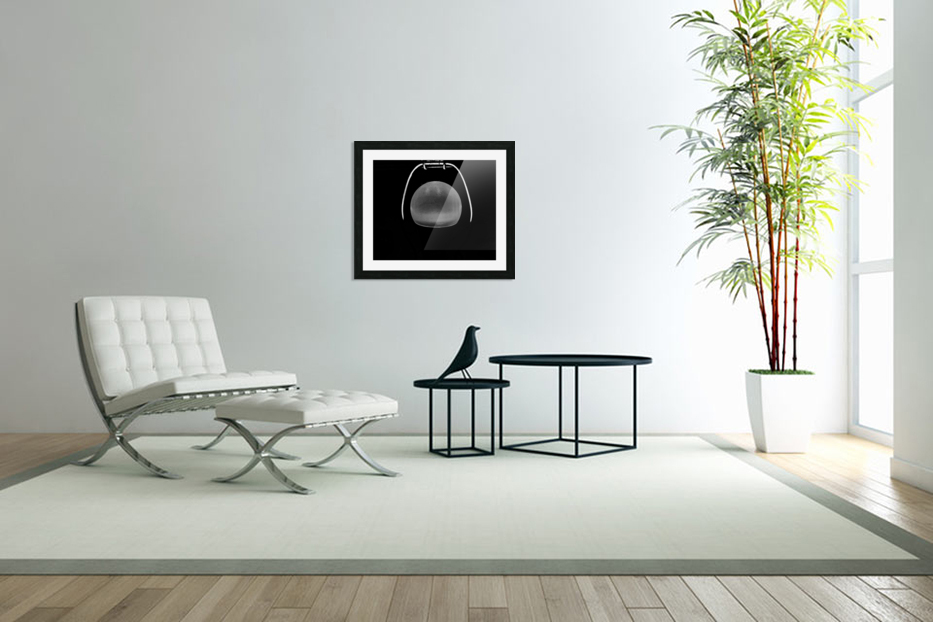 Ideas in Black and White in Custom Picture Frame