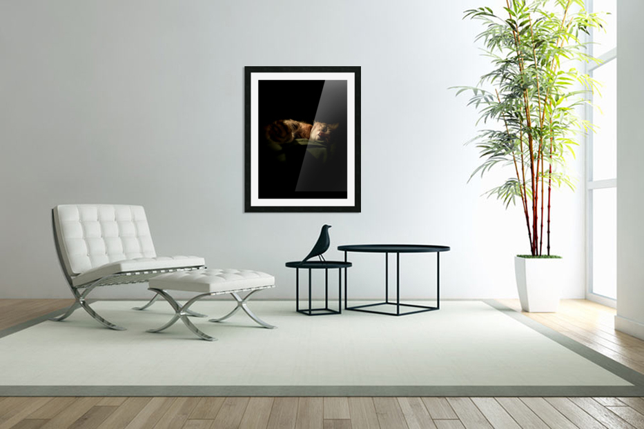 In the Shadows of the Night in Custom Picture Frame