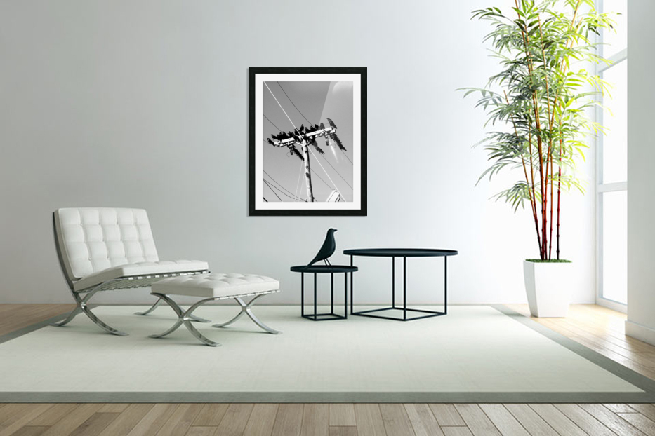 Birds on a wire in Custom Picture Frame