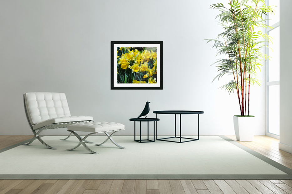 Yellow Daffodils wc in Custom Picture Frame