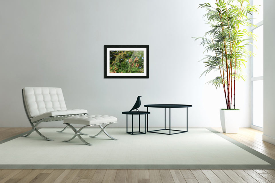 Spruce twig and background in Custom Picture Frame