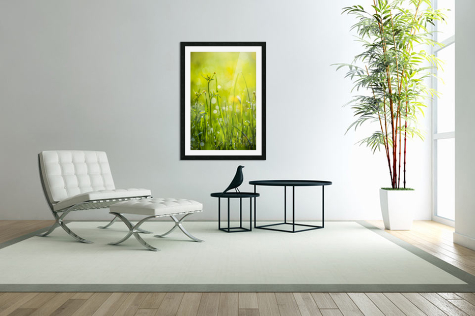 Summer meadow in Custom Picture Frame