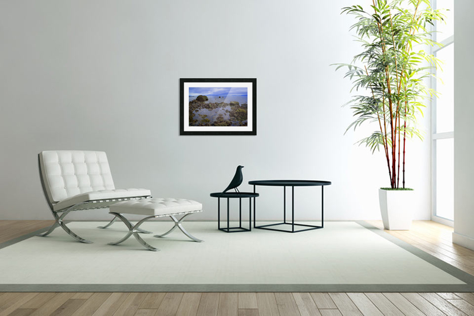 Tranquility at Low Tide in Custom Picture Frame
