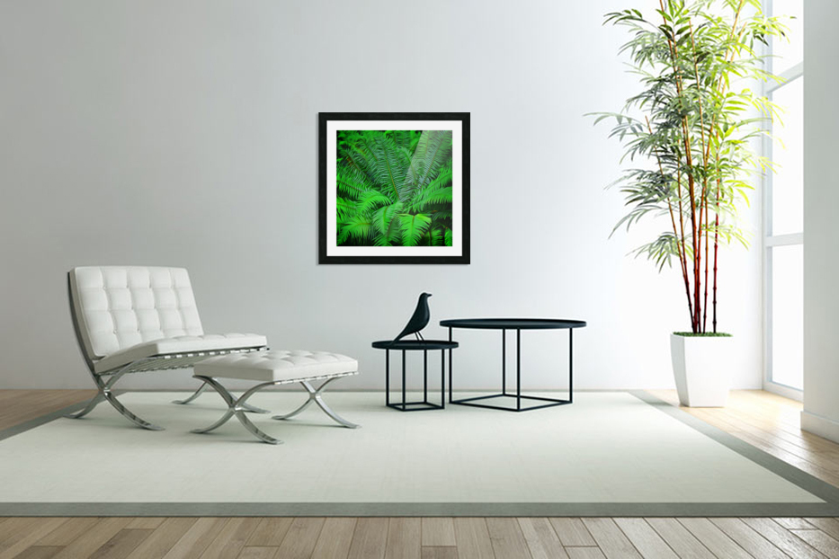Just Ferns in Custom Picture Frame