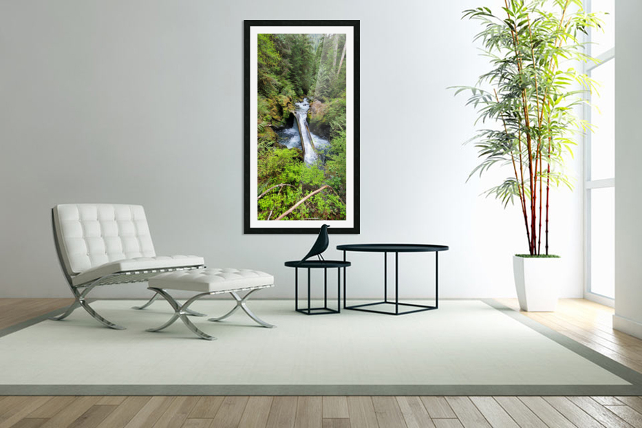 Natures Waterslide in Custom Picture Frame