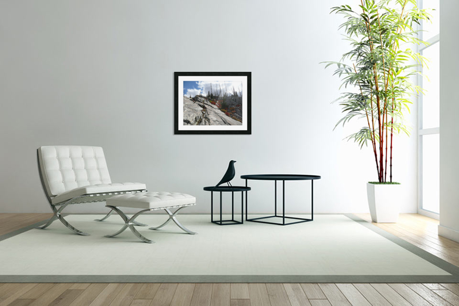Easy Climb to Grouse Mountain in Custom Picture Frame