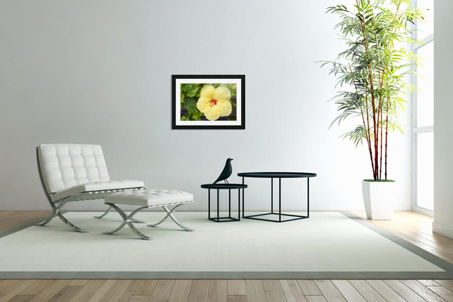 Yellow Hibiscus Tropical Flower Hawaii in Custom Picture Frame