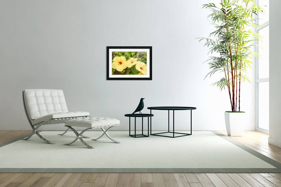 Hibiscus Trio   Tropical Flowers Hawaii in Custom Picture Frame