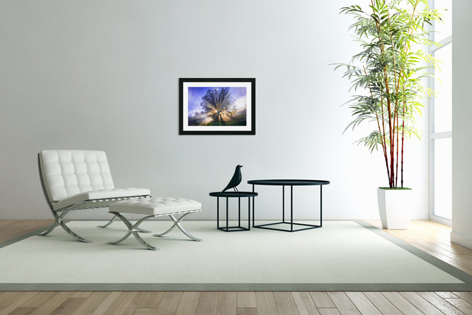 Rays of Light in Custom Picture Frame