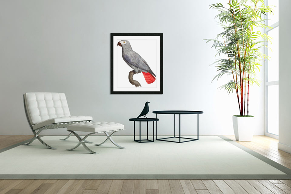 Parrot Print Art Poster with Parrot Parrot Wall Art for Bird Lovers in Custom Picture Frame