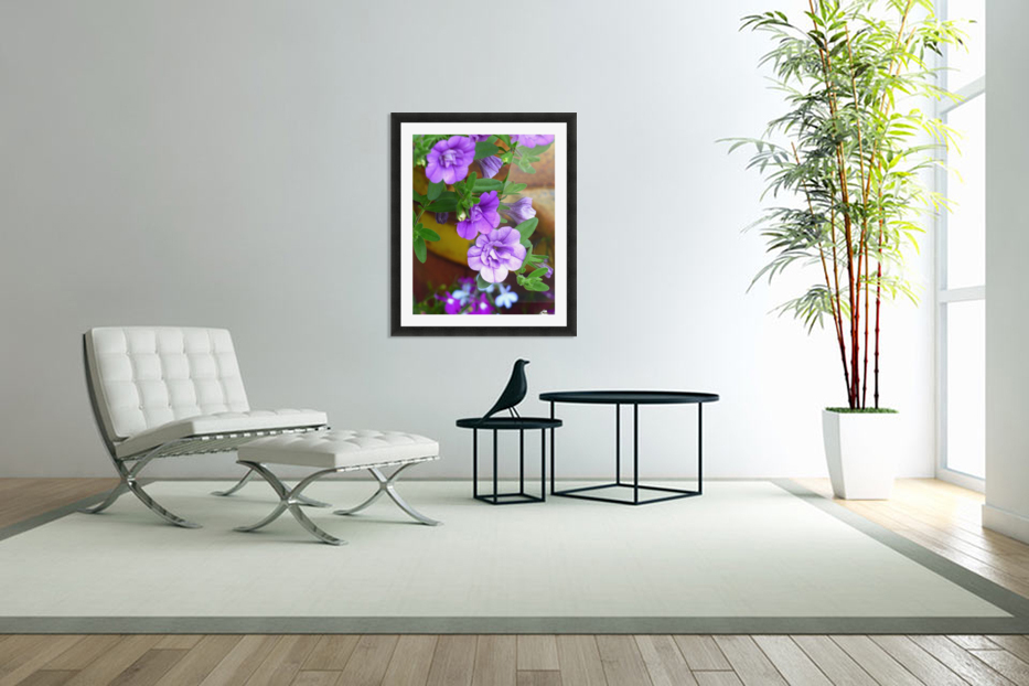 Purple Petals in Custom Picture Frame