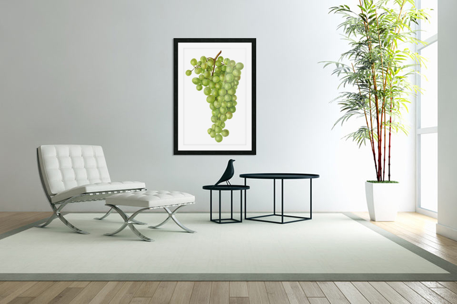 Green Grapes Wall Decor Vintage Botanical Poster Kitchen Art in Custom Picture Frame