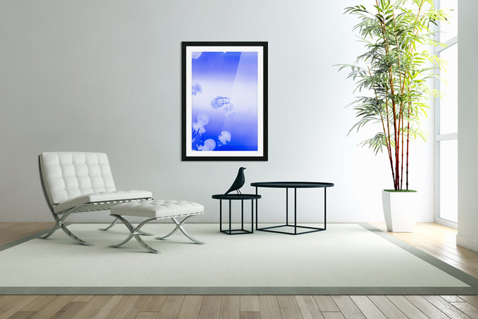 Jellyfish in Custom Picture Frame