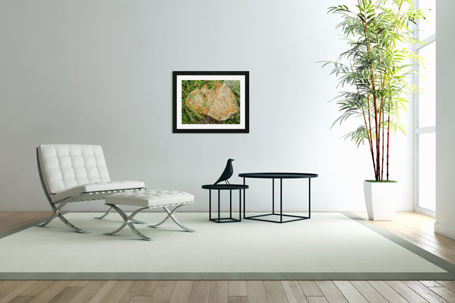 Brown Sandstone Rock With Grass in Custom Picture Frame