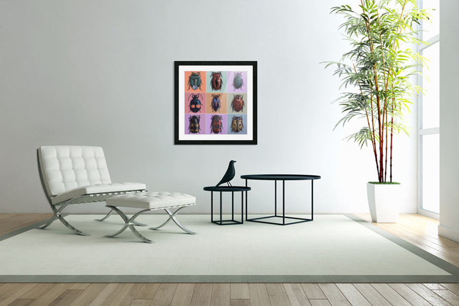 Assorted Beetles in Custom Picture Frame