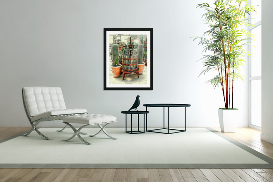 Old Wine Press Used in Succulent Display in Custom Picture Frame