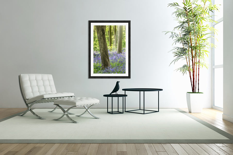 Bluebell Wood in Custom Picture Frame