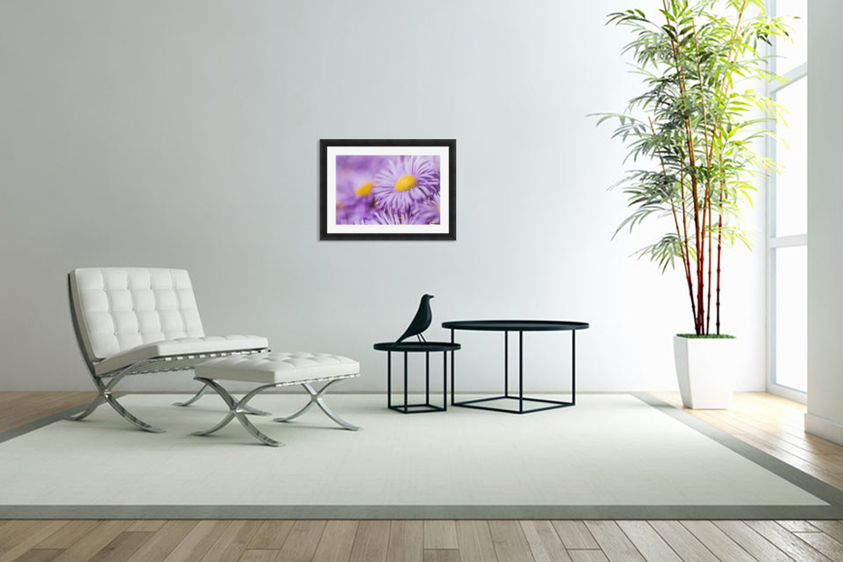 Beautiful summer background in Custom Picture Frame