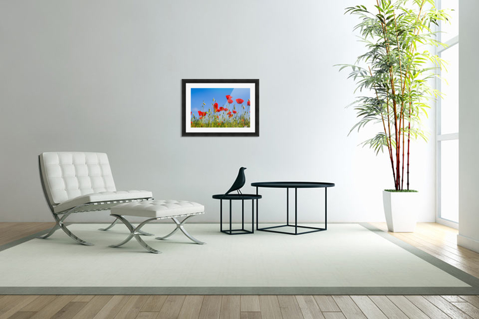 Beautiful Sunset poppy flowers in Custom Picture Frame