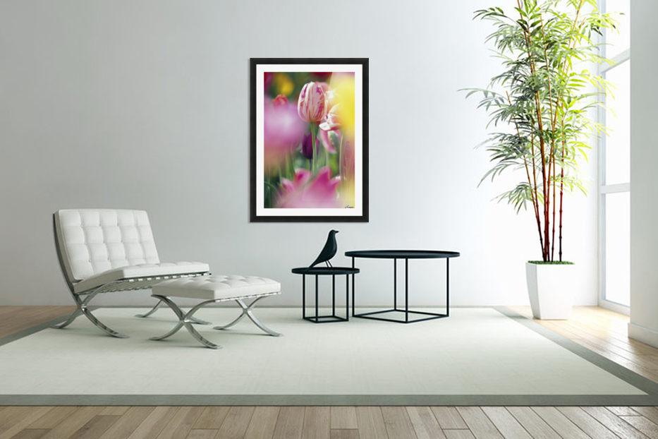 Tulip Flower in Custom Picture Frame