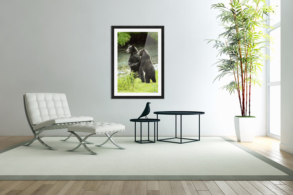Two Grizzly Bears in Custom Picture Frame