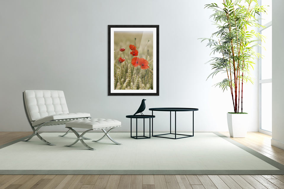 Wildflowers; Poppies In A Grain Field in Custom Picture Frame