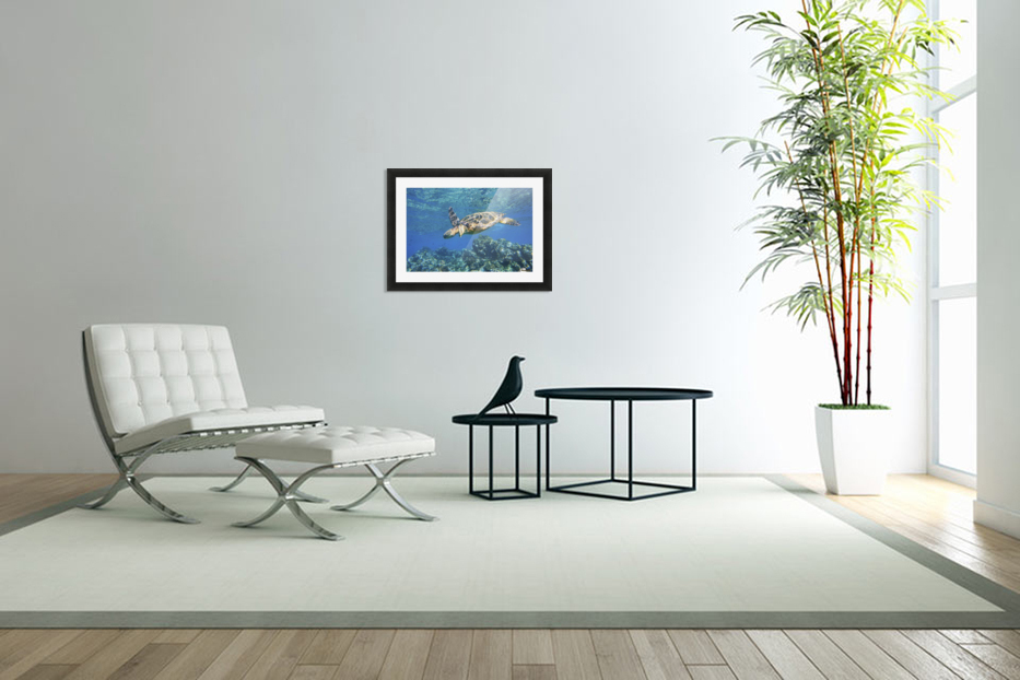 green sea turtle swimming in ocean sea in Custom Picture Frame