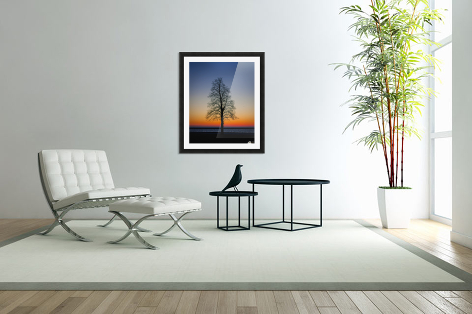 Trees IV in Custom Picture Frame