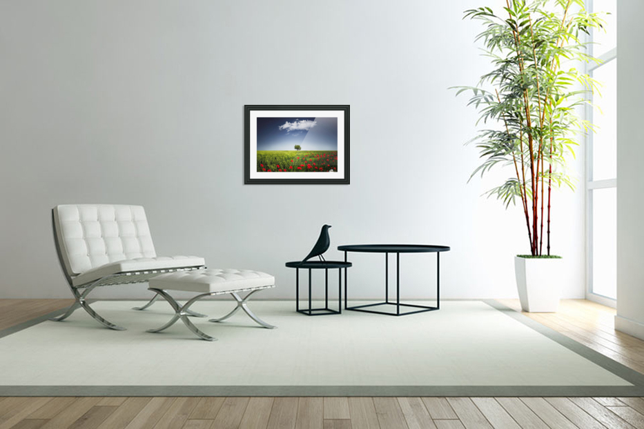 Lone tree a poppies field in Custom Picture Frame
