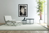 Spotted Owl - 2  Acrylic Print