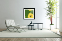 Sunflower (59)_1559876653.1233  Acrylic Print