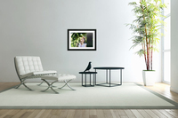 TELL ME MORE...Collection 5-6  Acrylic Print