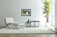 TELL ME MORE...Collection 6-6  Acrylic Print