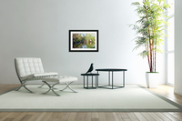 Relaxing Pond View  Acrylic Print