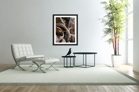 Juxtaposed Nature Acrylic Print