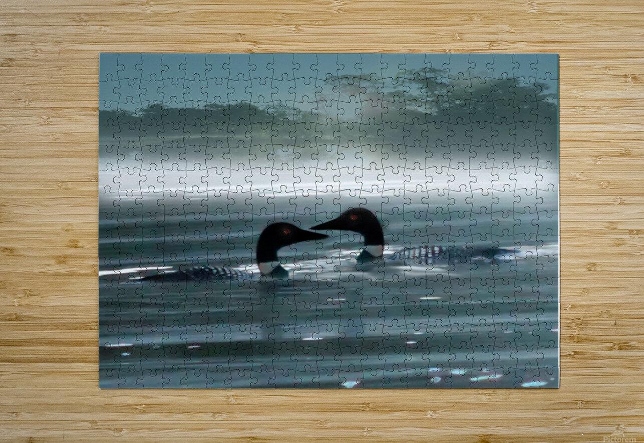 TwoLoonsEnhanced  Impression métal HD avec cadre flottant sur le dos