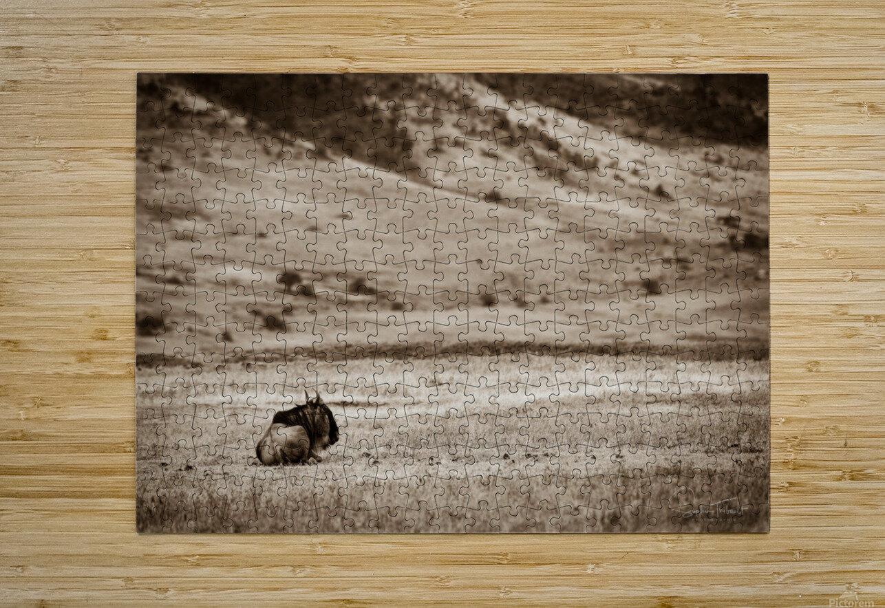La solitude du gnou  HD Metal print with Floating Frame on Back