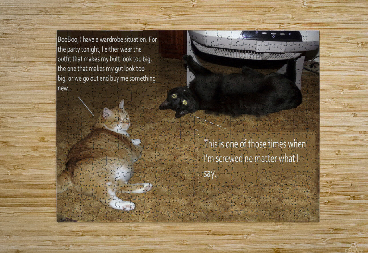 BooBoo&Goldie2  HD Metal print with Floating Frame on Back